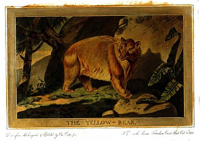 Charles Catton, Animals (1788) Page20 Image1.jpg