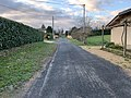 Chemin Pins St Jean Veyle 3.jpg