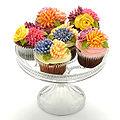 Cheshire cupcakes.jpg