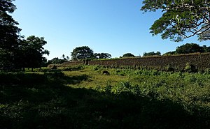 Kingdom of Mrauk U - City walls of Mrauk U