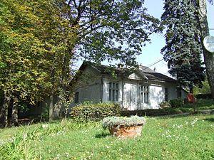 Ciucea - Image: Ciucea castle Ady Endre house 3