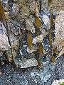 Clast-rich impact pseudotachylite (Sudbury Breccia, Paleoproterozoic, 1.85 Ga; Crab Lake South roadcut, south-southeast of Cartier, Ontario, Canada) 12 (46818332285).jpg