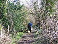 Clearing the Way - geograph.org.uk - 711162.jpg
