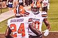 Cleveland Browns vs. Buffalo Bills (20156996013).jpg