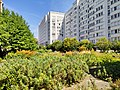 Clichy - Jardin du pavillon Vendôme - IMG 20190710 112029 08.jpg