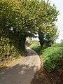 Climb, towards Yew Tree Cross - geograph.org.uk - 1021815.jpg