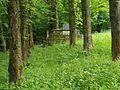 Cmentarz wojenny nr 107 – Biecz 6PC12.jpg