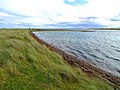 Coast near Littleferry - geograph.org.uk - 1496822.jpg