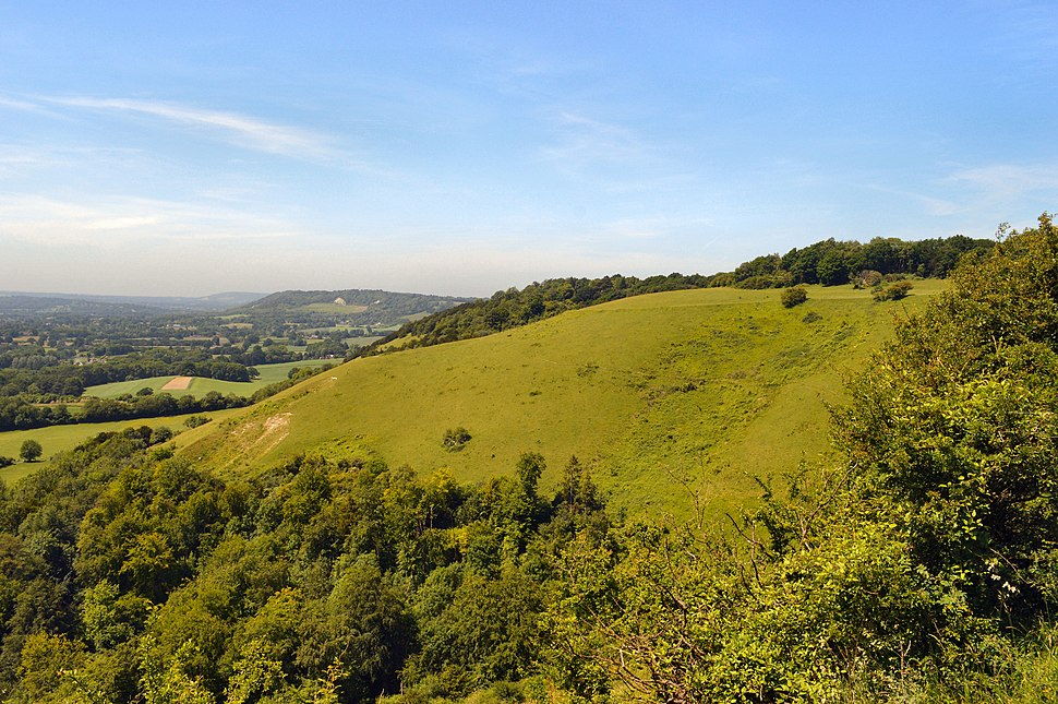 Colley Hill, view