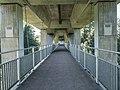 Columbanweg Brücke über die Glatt, Gossau SG - Flawil SG 20190704-jag9889.jpg