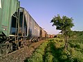 Comboio que passava sentido Guaianã na Variante Boa Vista-Guaianã km 200 em Itu - panoramio - Amauri Aparecido Zar… (1).jpg