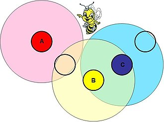 Competitive Lotka–Volterra equations - An illustration of spatial structure in nature. The strength of the interaction between bee colonies is a function of their proximity. Colonies A and B interact, as do colonies B and C. A and C do not interact directly, but affect each other through colony B.