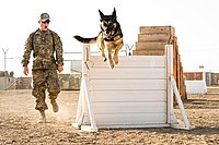 Controlled training exercises 130129-F-HX529-057.jpg