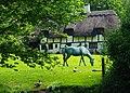 Cottage near Basely Bridge, Basingstoke Canal - geograph.org.uk - 1746660.jpg