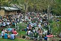 Courtyard Music at Fremantle Arts Centre.jpg