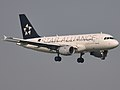 Croatia Star Alliance Livery A319 9A-CTI.jpg