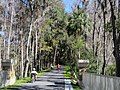 Crossing the Withlacoochie River in Dunnellon - panoramio.jpg