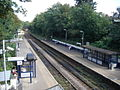 Crouch Hill Station 01.JPG
