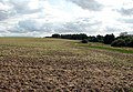 Cultivated field - geograph.org.uk - 952994.jpg