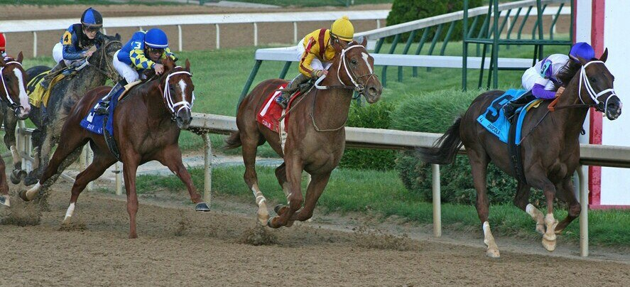Curlin in the Final Turn in the 2008 Stephen Foster Handicap (2972085393)