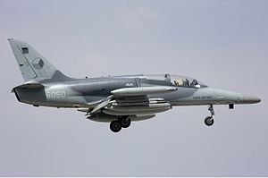 Czech Air Force Aero L-159A ALCA Lofting-1.jpg