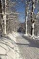 Czerniawa Zdrój - ul. Górzysta zimą - panoramio (1).jpg