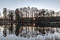Dülmen, Wildpark -- 2019 -- 3187.jpg
