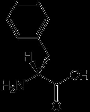 Phenylalanine racemase (ATP-hydrolysing) - Image: D Phenylalanine