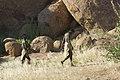 Damara Living Museum - Damaraland in Namibia - 09.jpg