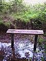 Damp seat - geograph.org.uk - 270168.jpg