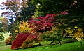 Dartington autumns colours-35.jpg