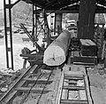 De houtzagerij met een cirkelzaag, Bestanddeelnr 252-4831.jpg