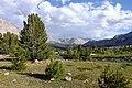Descending from Upper Basin (43407895431).jpg