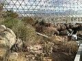 Desert Zone - panoramio.jpg