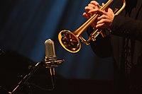Deutsches Jazzfestival 2013 - Details - Microfon - 01.JPG