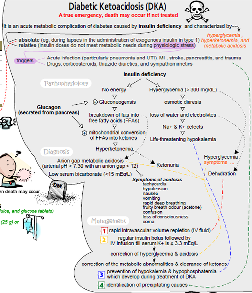 Diabetic ketoacidosis concept map
