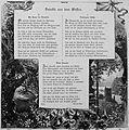Die Gartenlaube (1892) b 485.jpg