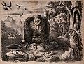 Die Praxis der Naturgeschichte - ein vollständiges Lehrbuch über das Sammeln lebender und todter Naturkörper; deren Beobachtung, Erhaltung und Pflege im freien und gefangenen Zustand; Konservation, (20753756698).jpg