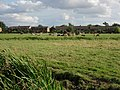Ditton Meadows - geograph.org.uk - 927755.jpg