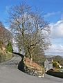 Dobroyd Road, Todmorden (3362969543).jpg
