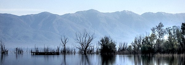 Doiran Lake near the town Dojran Lake 209.jpg