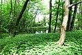 Dolny Sopot, Sopot, Poland - panoramio (59).jpg