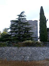 Donjon Cigogné.jpg