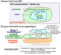 Donut polygonen en topologie voorbeelden.PNG