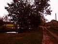 Droga przez Wrony - panoramio.jpg