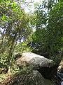 Edakkal Caves - Views from and around 2019 (2).jpg