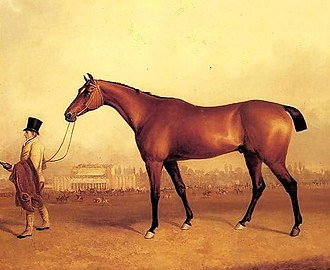 Orville (horse) - Orville's son Emilius, who emulated his sire by being Champion Sire on two occasions