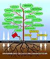 Enfermedad Celíaca - árbol de complicaciones.jpg
