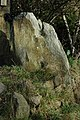 Erratic boulder, Calcot Hill - geograph.org.uk - 673470.jpg