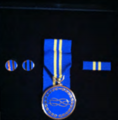FIAVMedal.png